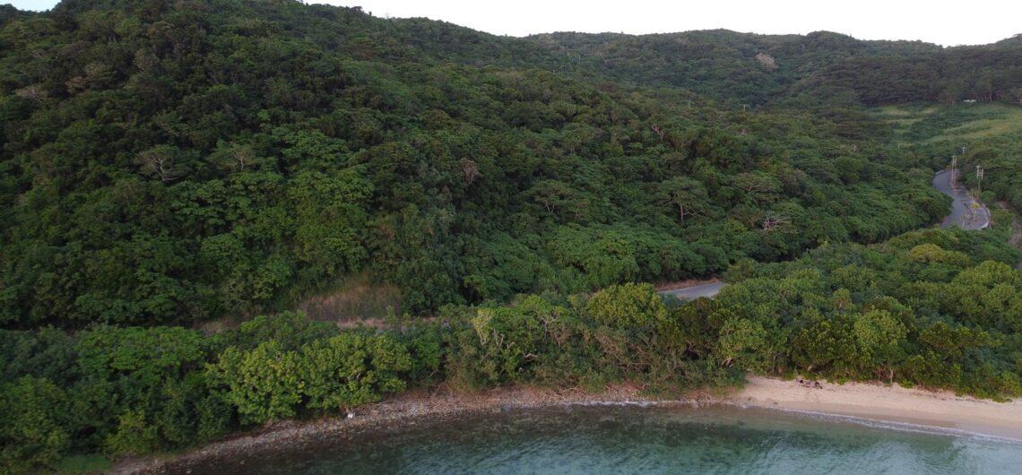 大崎ビーチ