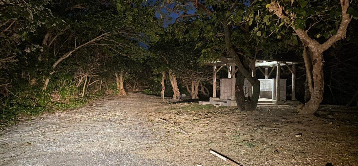 伊野田キャンプ場